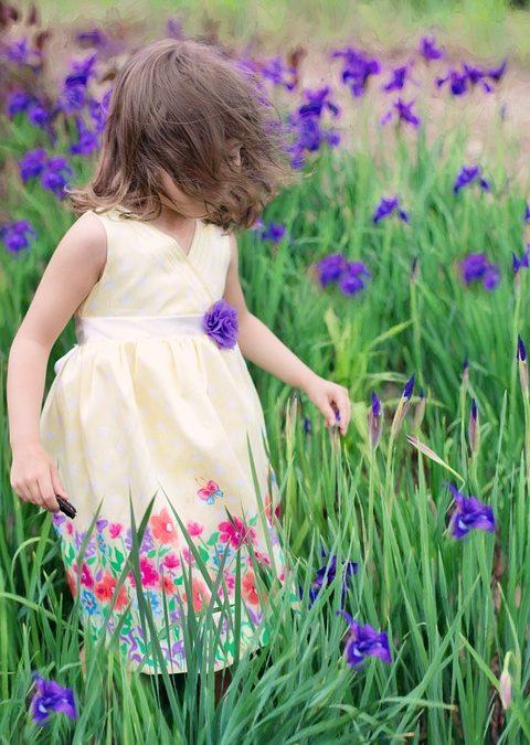 Wiosenna łąka – zajęcia dla dzieci