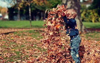 Dźwiękowa jesień!!!